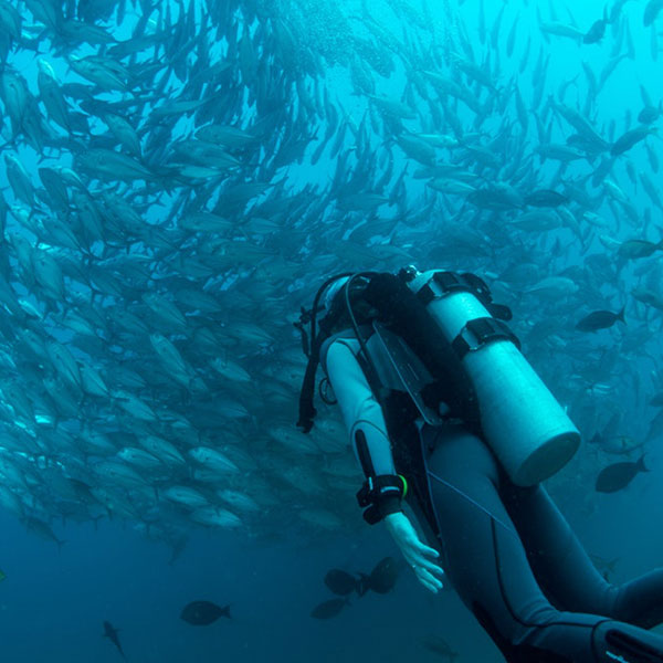 Some advices for leisure diving from technical diving